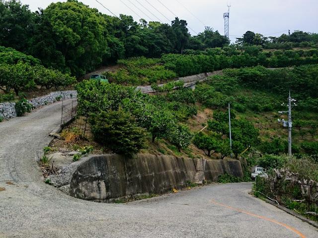 とびしま海道 岡村島 ナガタニ展望台 激坂