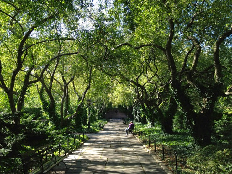 3. The Conservatory Garden - Top 10 Things to See and Do in Central Park, NYC