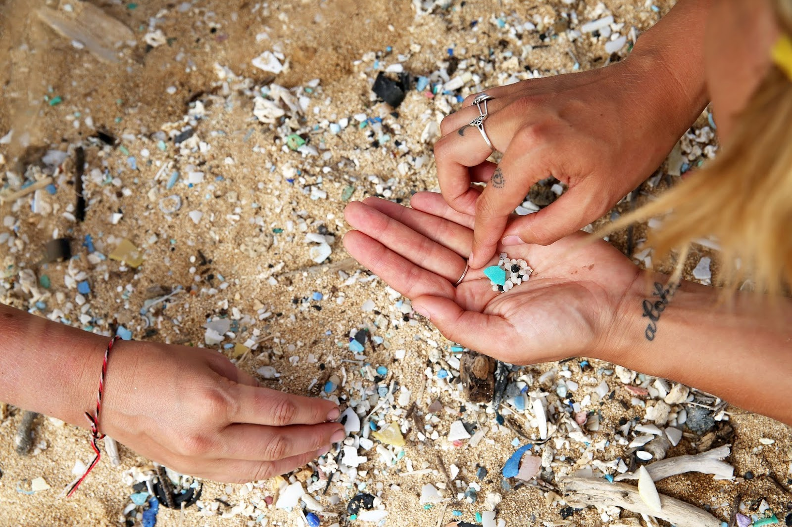 Over 300 Women Will Sail Across The World To Fight Ocean Plastic