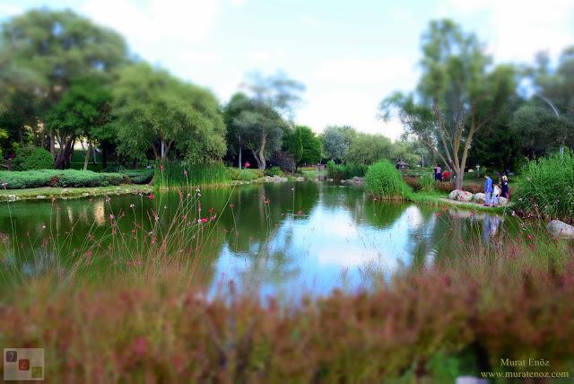 Bahçeşehir Park Gölet - Bahçeşehir Göleti - Bahçeşehir Gölet Alanı - Bahçeşehir Gölet Parkı