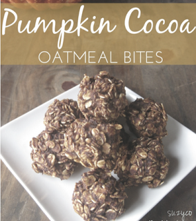 pumpkin cocoa oatmeal bites