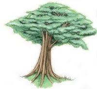 13/08/2020· sosiologi agama, apakah ada? Psikotes Gambar Pohon PSYCHOLOGYMANIA