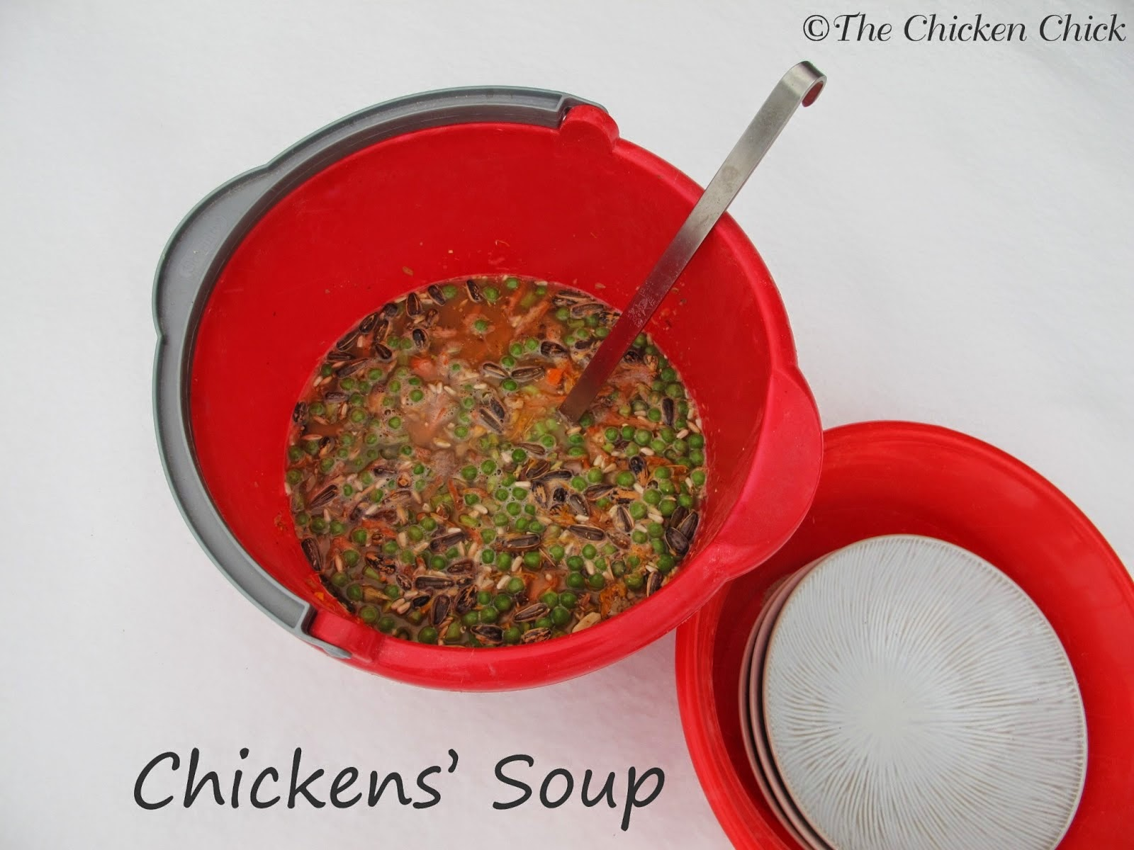 Chickens' Soup