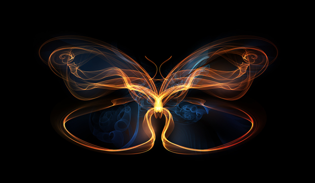 "What is the ""BUTTERFLY EFFECT""? BUTTERFLY%2BEFFECT"