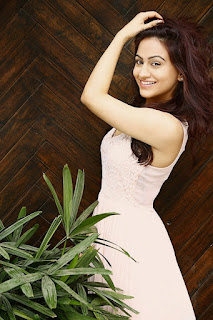 Actress Aksha Pardasany Latest Pictureshoot Gallery  (1).jpg