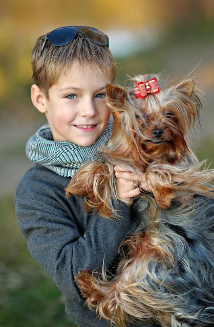 A boy holds his Yorkshire Terrier in his arms. Research shows pets are good for children.