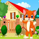 Games4King Cute Cat Rescu…