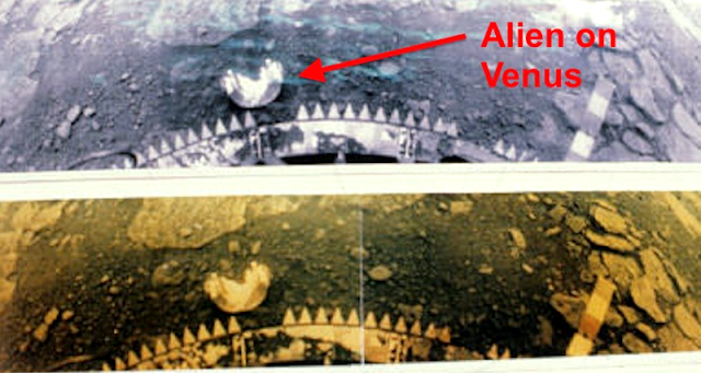 Astronomers Found Some Evidence Of Alien Life Exist On Venus