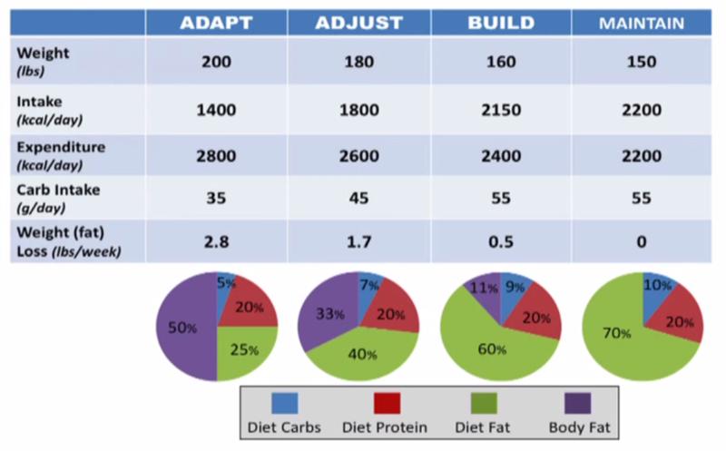 Taux de masse grasse : comment le calculer et l'interpréter