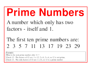 C Program To Print Prime Numbers From 1 To 100