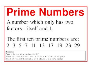 Prime Number Program in C