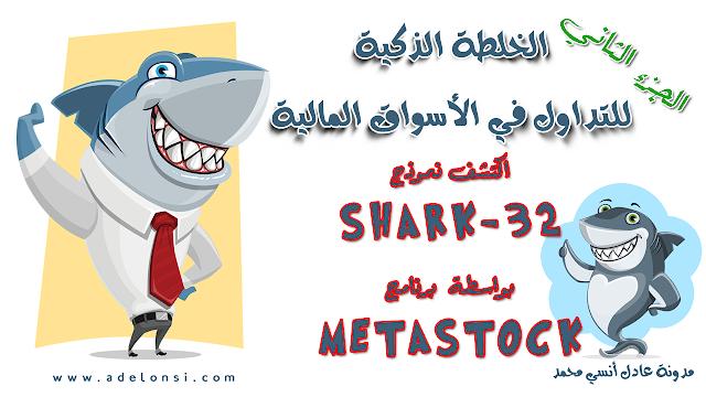 عمل خبير على برنامج الميتاستوك لإكتشاف نموذج شارك-32