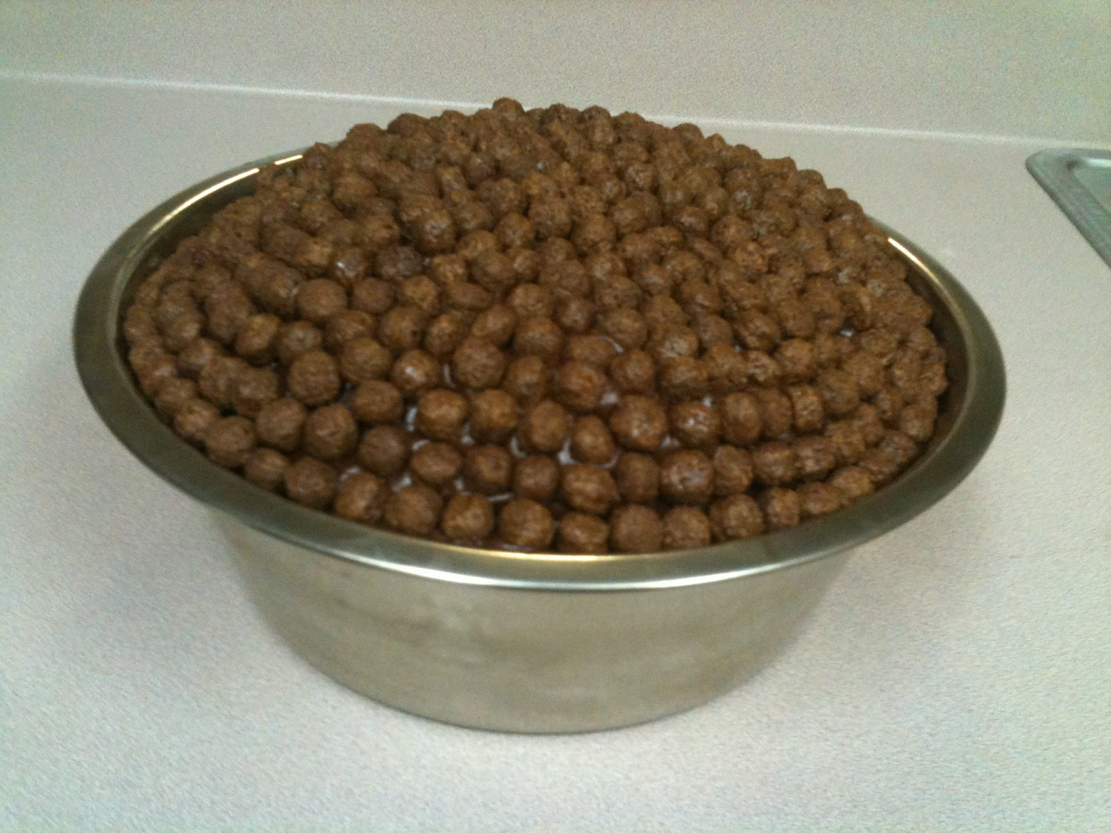Southern Wag Pet Accessories How To Make A Dog Bowl Cake