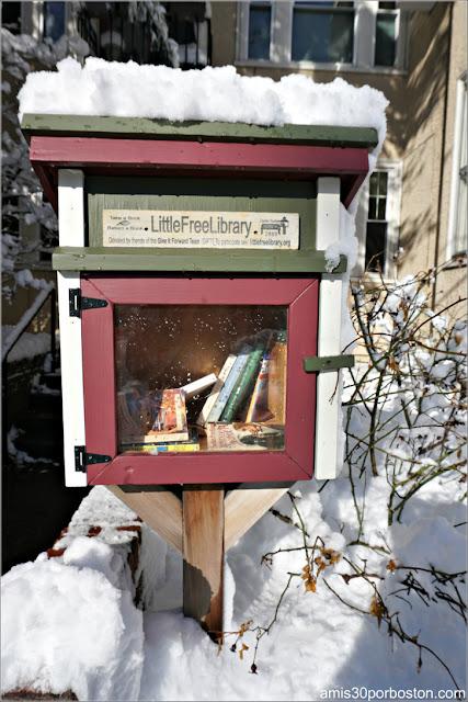 Pequeña Biblioteca Gratis después de la Tormenta Skylar