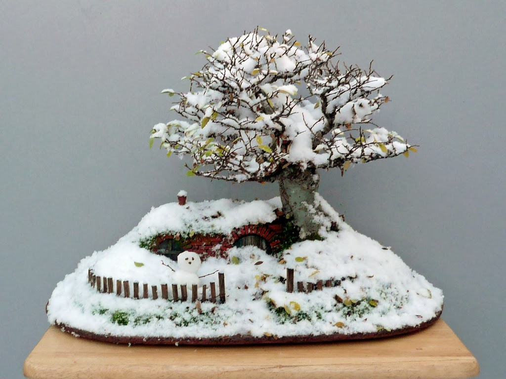 The Hobbit Movie News: Amazing Bonsai Tree Hobbit Hole is Fit for ... - Bonsai Tree Art