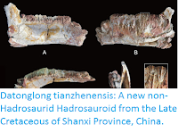 http://sciencythoughts.blogspot.co.uk/2016/04/datonglong-tianzhenensis-new-non.html
