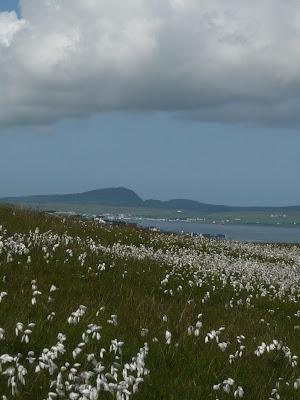 výhľad na druhú stranu ostrova Islay