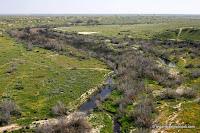 Eshkol Nationaal Park, de Negev-woestijn