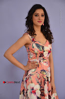Actress Richa Panai Pos in Sleeveless Floral Long Dress at Rakshaka Batudu Movie Pre Release Function  0007.JPG