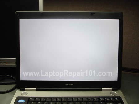 Lcd Screen Turned Completely White All Things About Laptop