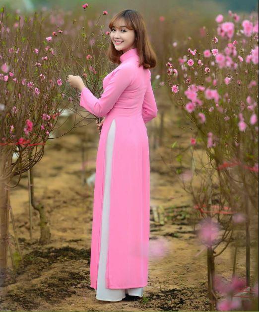 Sakura flower in Nhat Tan