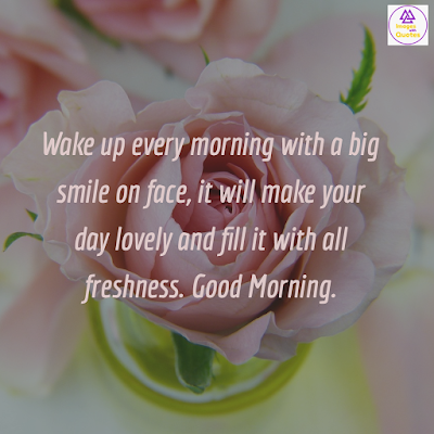 Top 50 Good Morning Rose Flowers Images With Quotes For Whatsapp Images With Quotes