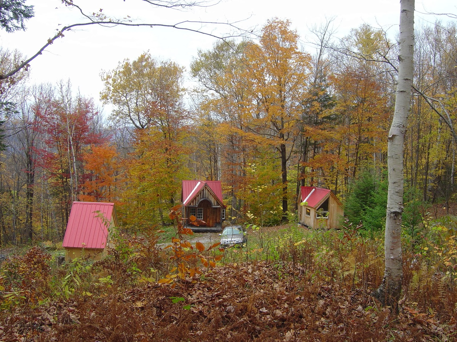 Relaxshacks Tiny House N Shed Compound In New