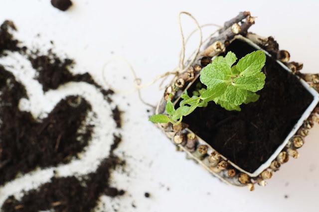 DIY Blumentopf zum Selbermachen