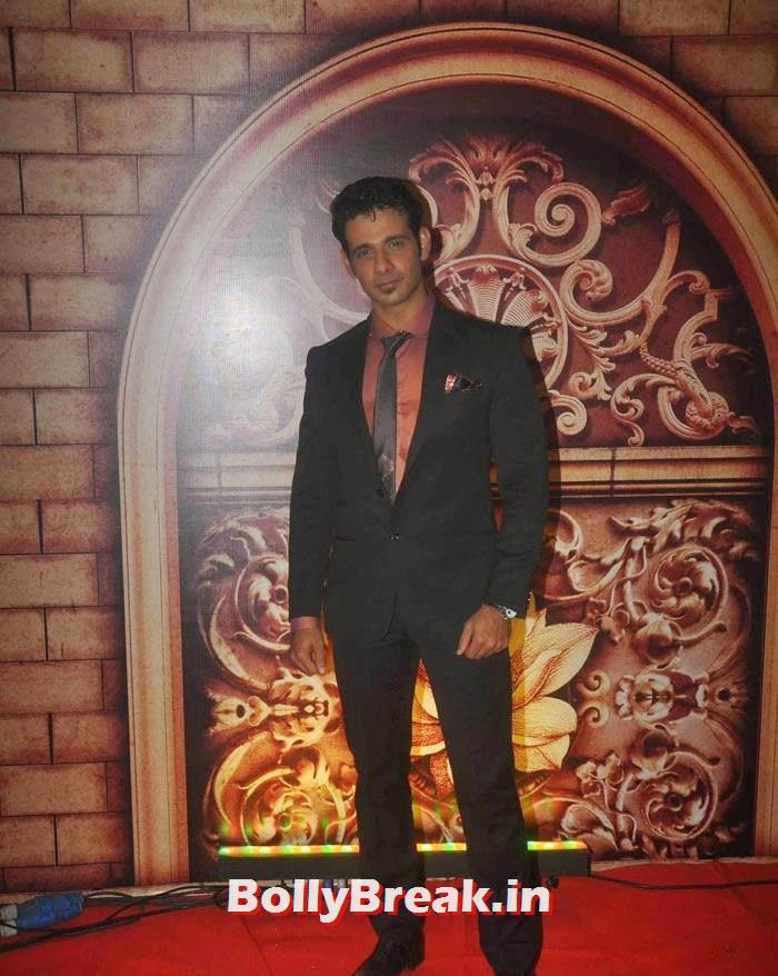 Viraf Patel, Zee Rishtey Awards 2014 Photo Gallery