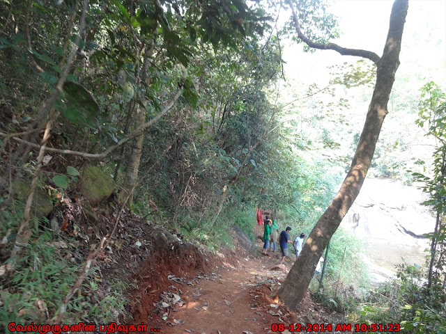 Meenmutty Waterfalls Hike