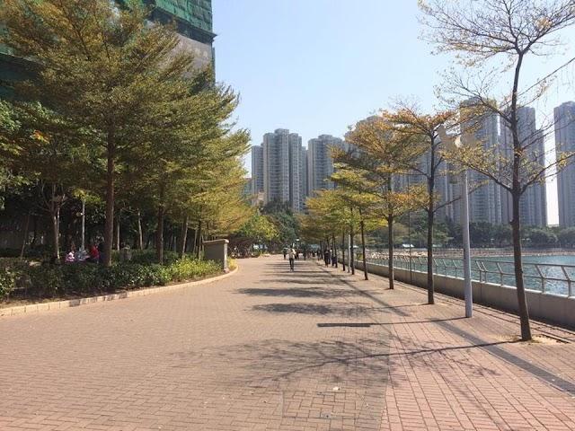 【慢活遊】漫步荃灣公園 細賞藍巴勒海峽的夕陽
