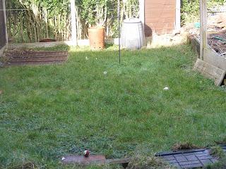 gardening, garden, garden makeover