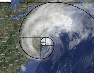 颱風的黃金比例