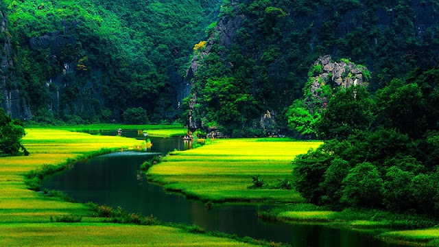 Natural Wonders of Limestone in Vietnam 2