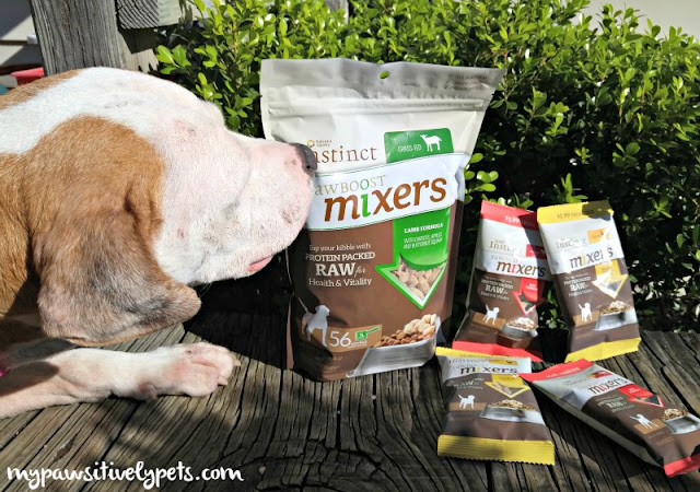 Instinct Raw Boost Mixers meal toppers are an easy way to add raw to your dog's diet