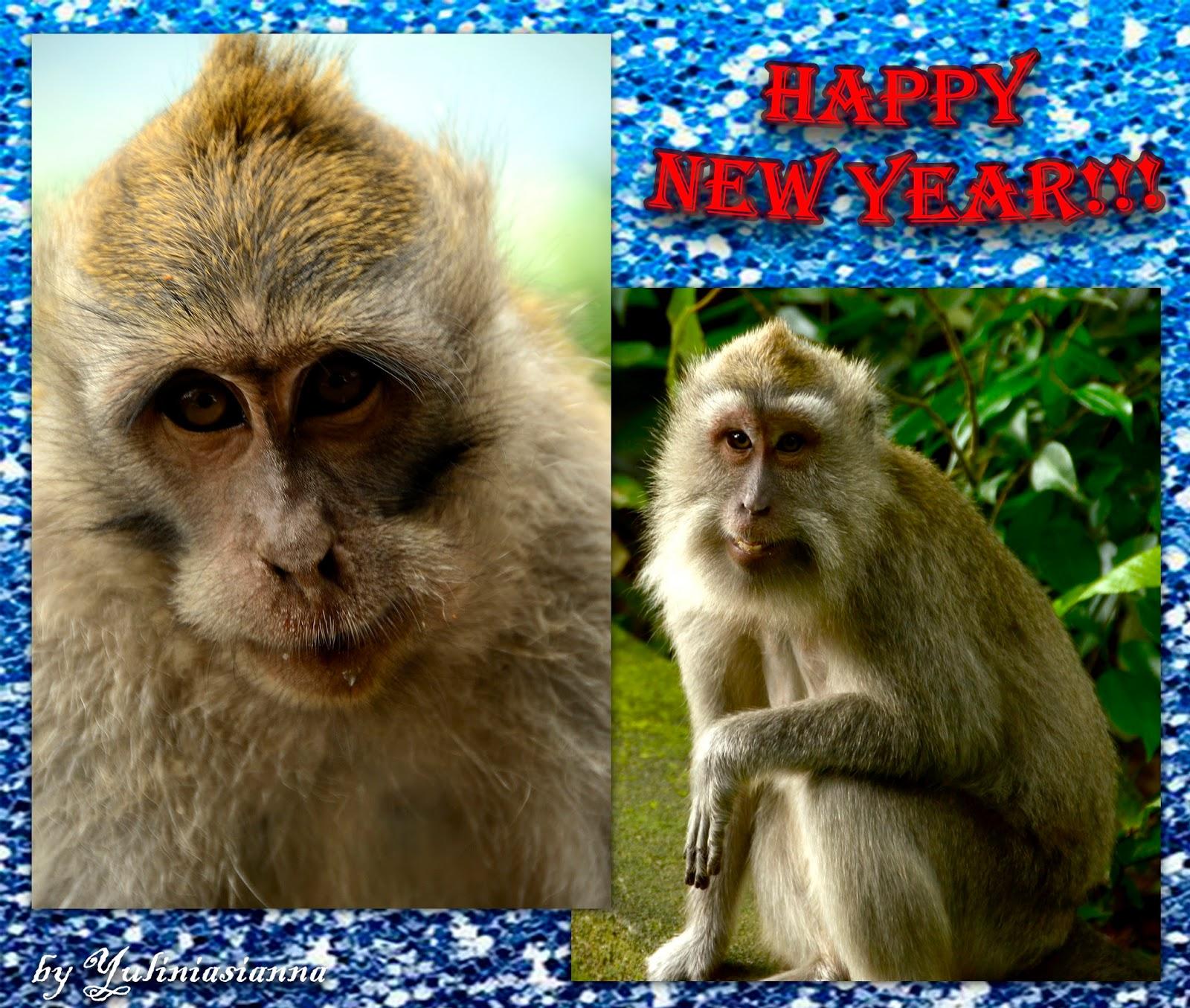 Новый год под звуки регги на Бали