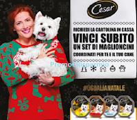 Logo Concorso Cesar '' #UgualiANatale'' e vinci 61 kit maglioni per se e per il proprio cane