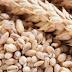 Cevadinha - o cereal que que vai turbinar suas receitas e sua saúde