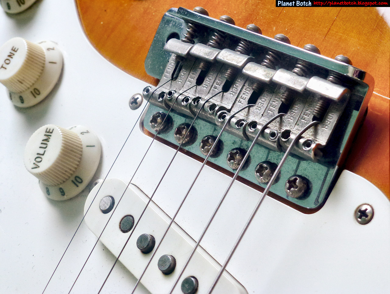 Where Would The Stratocaster Be Without Its Vibrato/Tremolo