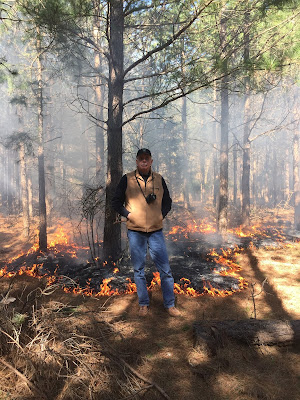 Pine Barrens Restoration Site New Jersey Ecological Forest prescribed burn