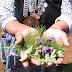Realizarán último operativo de salud mapuche williche en sector de Rahue Bajo