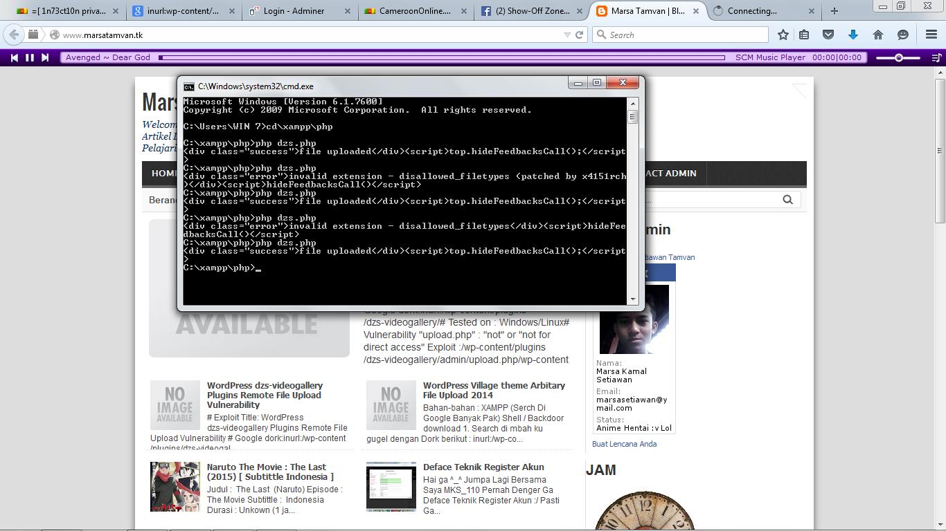 WordPress dzs-videogallery Plugins Remote File Upload