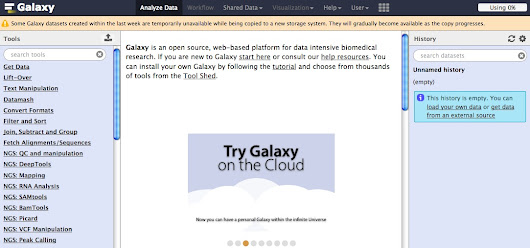 Bioinformatics with Galaxy: A test blog