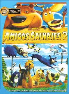 Amigos Salvajes 2 (2008) HD [1080p] Latino [Mega] dizonHD