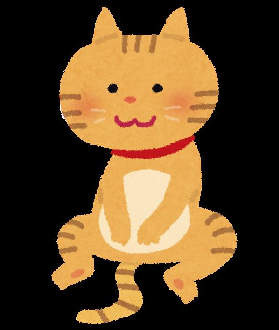 座っている猫のイラスト かわいいフリー素材集 いらすとや