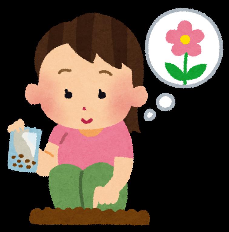 花の種を植えている女の子のイラストガーデニング かわいいフリー
