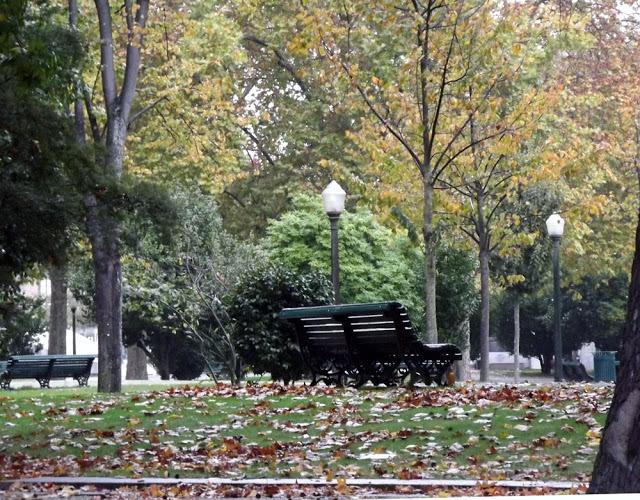 Praça e folhas do Outono no Porto