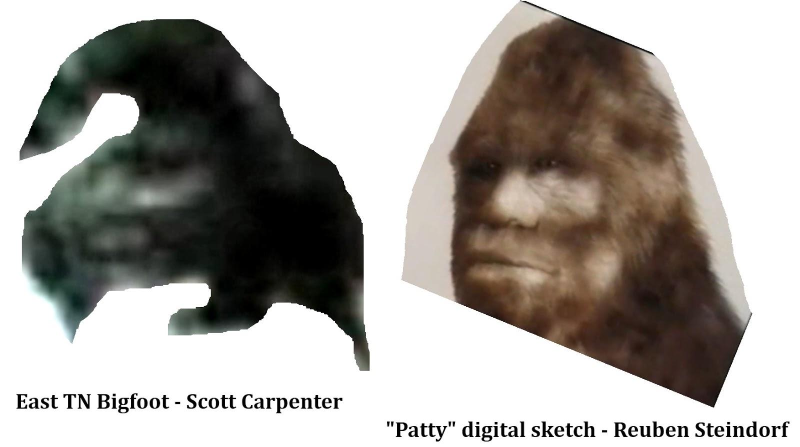 The Bigfoot Field Journal The Human Side Of Bigfoot