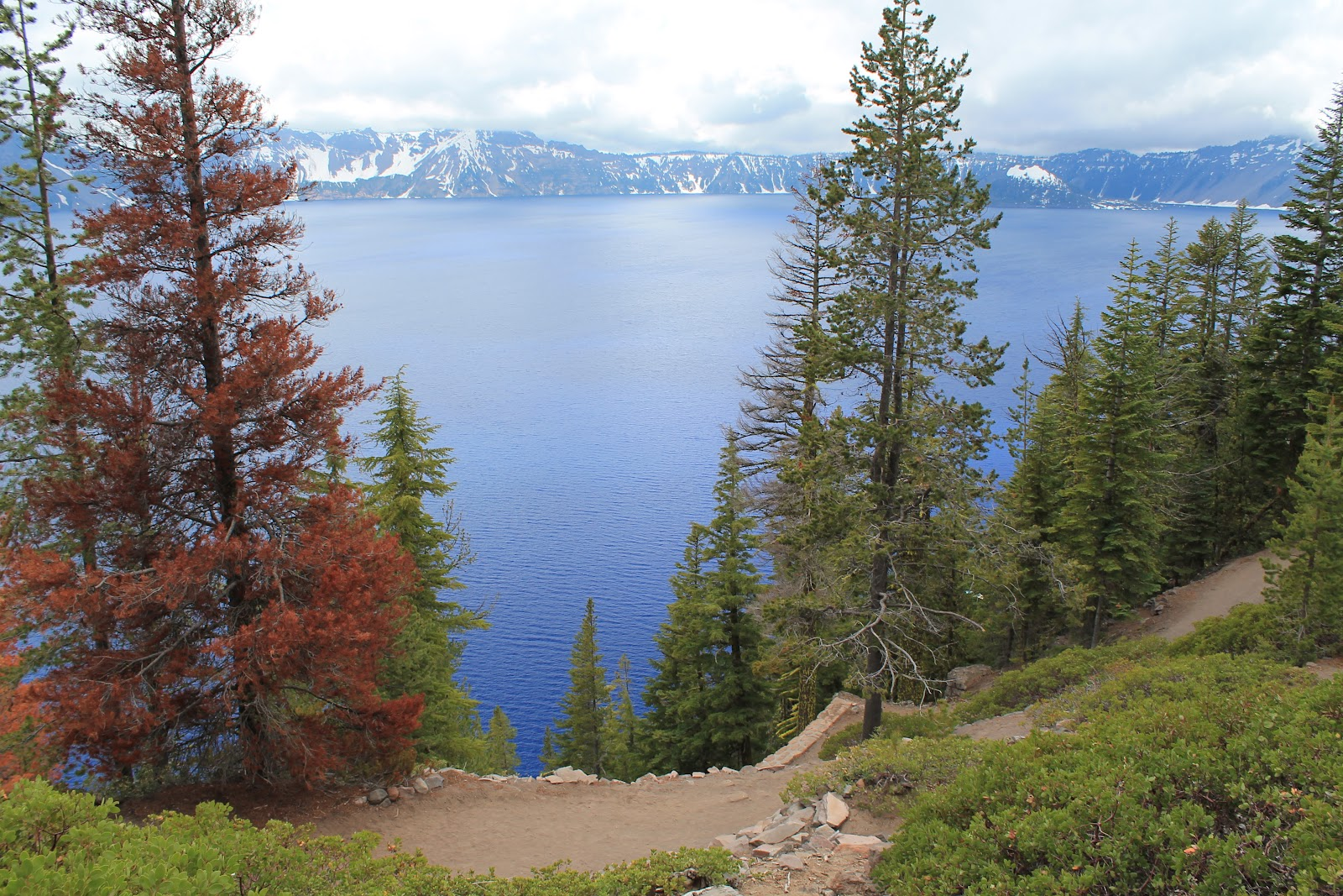 crater lake girls Crater lake national park news coverage of accidents at crater lake national  park  (upi) - a 14-year-old stockton, girl fell to her death here yesterday while.