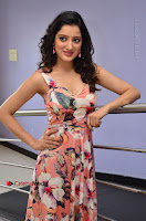 Actress Richa Panai Pos in Sleeveless Floral Long Dress at Rakshaka Batudu Movie Pre Release Function  0090.JPG